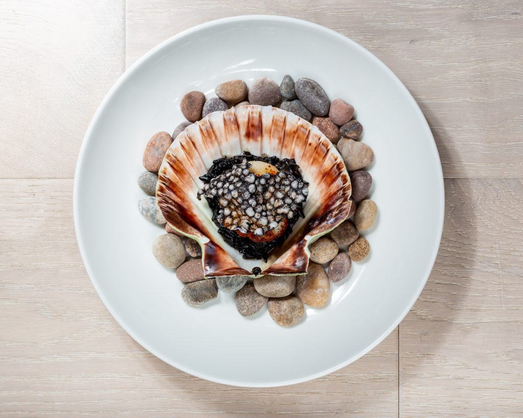scallop and cuttlefish dish by steve edwards
